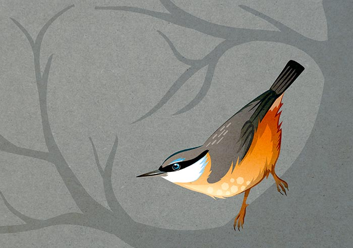 Weihnachtskarte «Vögel»